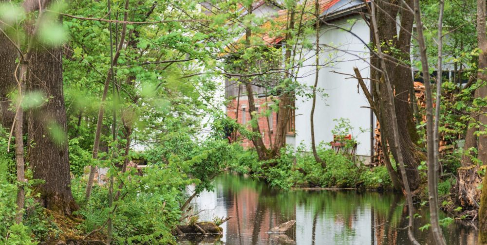 Naturkornmühle Huemer